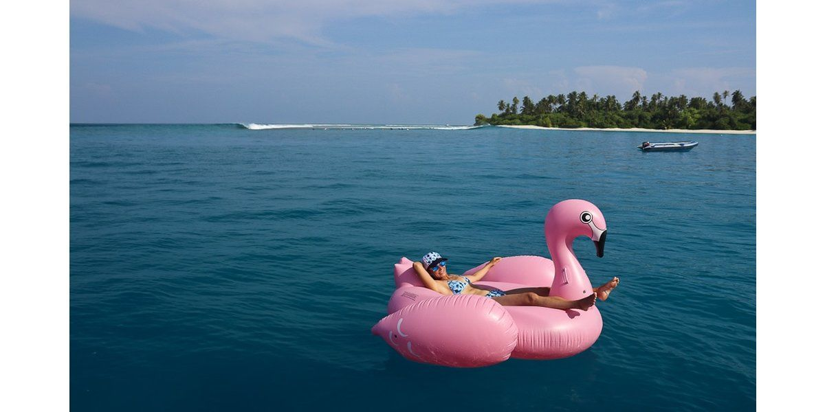 Xl 1200 pink flamingo floating near a maldives surf spot elysia surf charters maldives