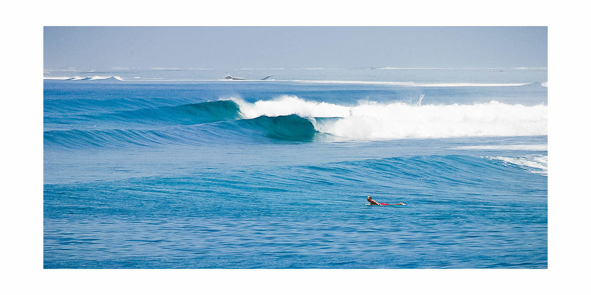 Xl 1200 fun waves elysia surf charters maldives